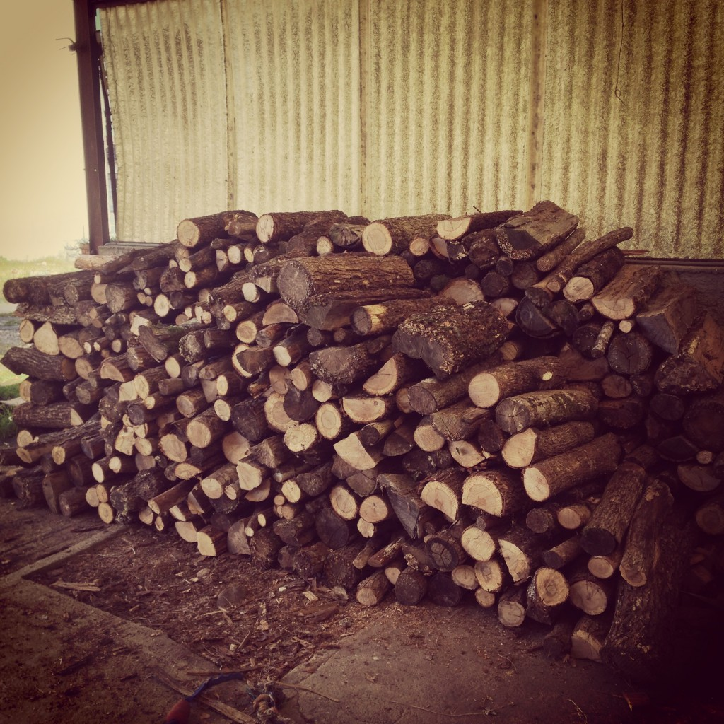 Stocking up with wood for the winter